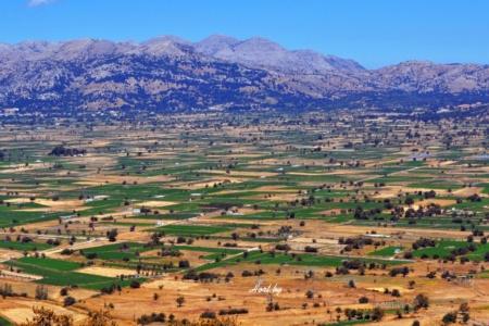 Крит. Диктейские горы. Плато Ласити.