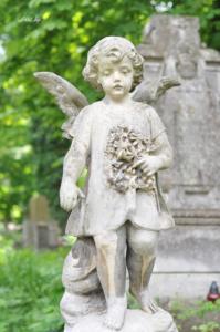 Ангелочек с цветами. Лычаковское кладбище. Львов.