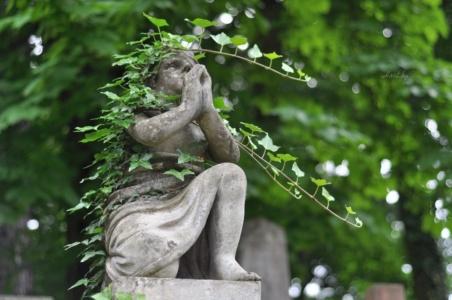Лычаковское кладбище. Молящийся ангел.