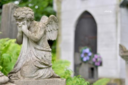Плачущий ангел. Лычаковское кладбище. Львов.
