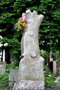 Обрубленное дерево. Лычаковское кладбище. Львов.