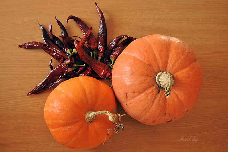 Как сделать Тыкву на Хэллоуин: примеры с фото